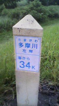 20110706_fujii①.JPG