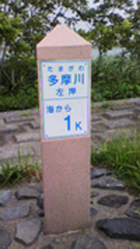 20110706_fujii②.JPG